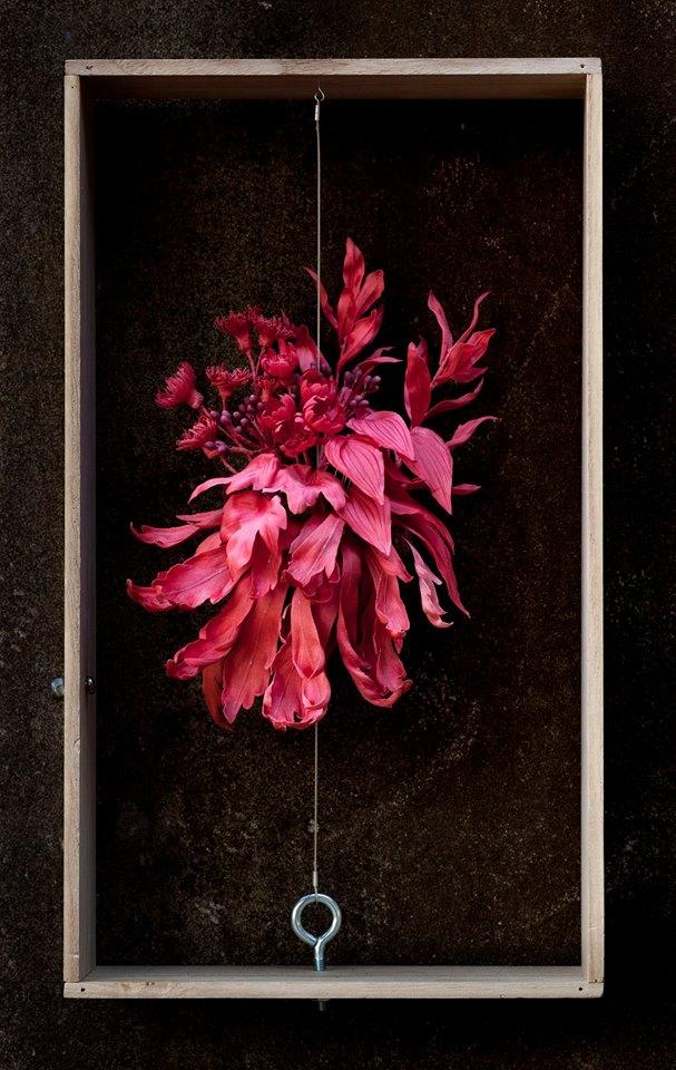 原植物の庭06